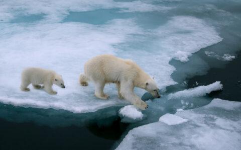 Zpráva IPCC nepřinesla nic nového